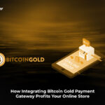 How Integrating Bitcoin Gold Payment Gateway Profits Your Online Store