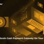 Setup Bitcoin Cash Payment Gateway On Your Website