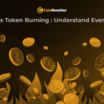 What is Token Burning: Understand Everything