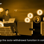 Auto-withdrawal function how to stop it in Coinremitter?